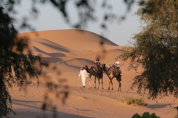 Camel Ride Abu Dhabi Desert